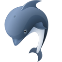 Dolphin-128