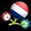 Euro 2012 Netherlands icon