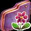 Flower Violet Folder icon