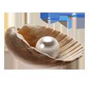 Pearl-128