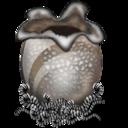 Alien Egg-128