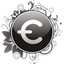 Euro currency sign icon