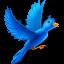 Flying bird-64