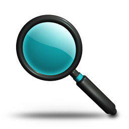 Search Magnifier