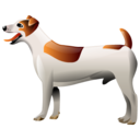 Dog-128