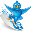 Twitter surfer icon