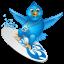 Twitter surfer-64