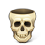 Pirate Skull icon