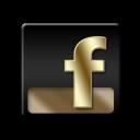 FaceBook Gold-128
