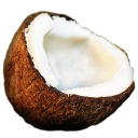 Coconut-128