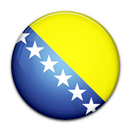 Flag of Bosnia and Herzegovina-256