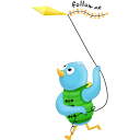 spring kite follow me-128