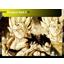 Dragon Ball Z-64