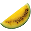 Yellow Watermelon-64