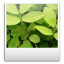 Toolbar Images icon