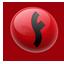 Flash Player CS4 Icon