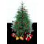 Xmas Tree-64