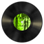 Vinyl green icon
