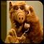 Alf2 icon