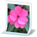 Document Picture Png-128