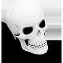 Dresden Skull-128