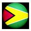 Flag of Guyana icon