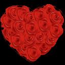 Flowers Heart Roses-128