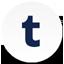Tumblr round icon