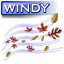 Windy Icon