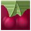 Cherrys icon