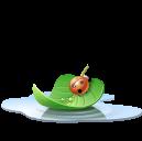Pool leaf