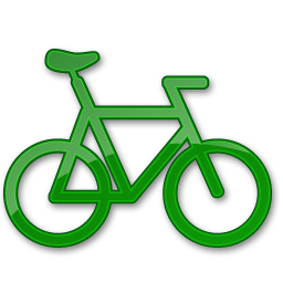 Bicycle Green 2-256