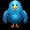 Twitter bird-128