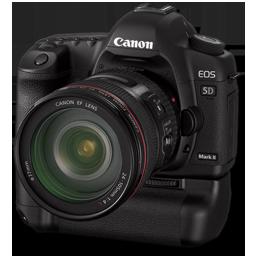 Canon 5D side bg
