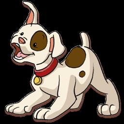 Dog-256