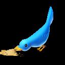 Hungry bird-128