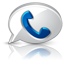 Google Voice high detail icon