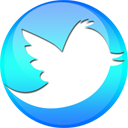 Twitter Sphere-128