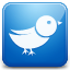 Twitter blue Icon