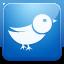 Twitter blue icon