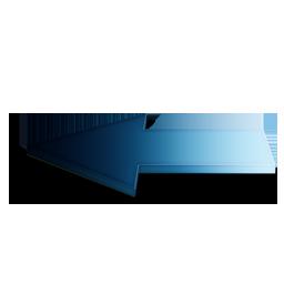 Precedent Bleu