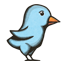 Woodprint Twitter Bird icon