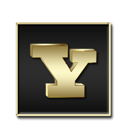 Yahoo Black and Gold