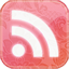 Feed pink floral Icon