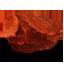 Philosopher`s Stone Red-64