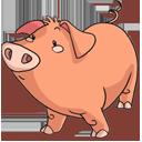 Pig-128