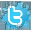 Inside twitter Icon