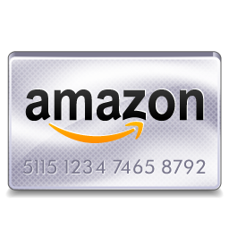 Amazon Payments Icon Download Credit Card Icons Iconspedia