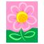 Pink Flower-64