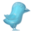 Glass Twitter Bird icon